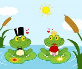 Frog Bride And Groom On A Pond