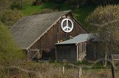 The Barn (And Peace Symbol), Bolinas, Marin County
