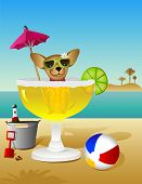 image of beach party  - A Chihuahua takes a margarita bath while vacationing on the beach - JPG