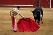 stock photo of bullfighting  - bullfight - JPG
