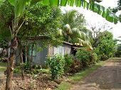 Native House Nicaragua