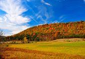 Peak Fall Foliage