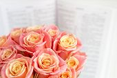 Roses In A Round Box And The Bible. Beautiful Pink Roses On A White Wooden Background. Beautiful Pin poster