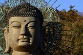 foto of seoraksan  - A shot of the bronze Buddha at Seoraksan South Korea - JPG
