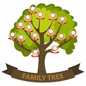 Genealogy Tree, Family Tree With Family Members. Flat Design, Vector Illustration, Vector. poster