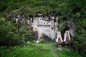Traditional statues tau tau on a rock wall. Toraja region of Sulawesi island. Indonesia