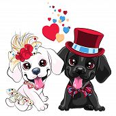 Lovers Cute Cartoon Labrador Retriever Dogs, Yellow Labrador Gentleman In A Hat And Bow Tie And Whit poster
