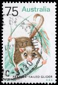 AUSTRALIA - CIRCA 1990s: A stamp printed in Australia shows image of a Feather Tailed Glider , serie