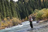 picture of fly rod  - fly fishing angler makes cast while standing in water - JPG
