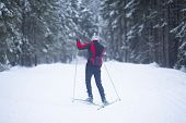 Cross Country. A Skier Is Skiing In Winter In The Woods. poster
