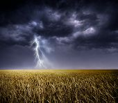 picture of lightning  - Dark stormy clouds over a field - JPG