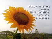 New Year Inspirational Quote - 2020 Smells Like Healing, Transformation, Blessings, And Success. Wit poster