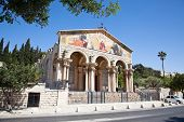 pic of gethsemane  - The Church of All Nations or Basilica of the Agony - JPG