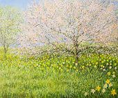 stock photo of daffodils  - An oil painting on canvas of a springtime natural landscape with blooming trees and colorful meadow full of daffodils - JPG