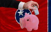 Financiamento Euro em rico mealheiro bandeira do estado americano de Tennessee