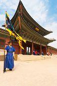 Blue Guard Flag Gyeongbokgung Palace Entrance V