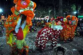Traditional Vietnamese dragon dance during the Tet Lunar New Year, in Ho Chi Minh city, Vietnam