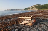 Lobster Trap On Gaspe Shoreline