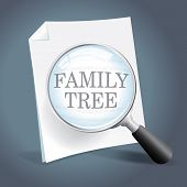 Looking At A Family Tree