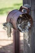 stock photo of flour sifter  - A bird - JPG