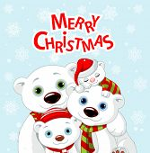 stock photo of bear cub  - Polar bear family Christmas greeting card - JPG