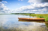 stock photo of boggy  - boat in a high cane on the bank of lake - JPG