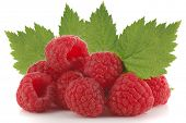 Extreme close-up image of raspberries studio isolated on white background
