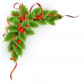 stock photo of christmas flower  - Vector Christmas holly with berries - JPG