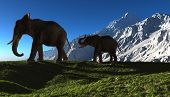 Group of elephants on a background of mountains.