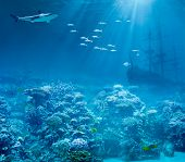 foto of ship  - Sea or ocean underwater with shark and sunk treasures ship - JPG