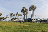 Venice Beach, California, USA - April 20, 2014:  Colorful buildings and tall palms along the eclecti