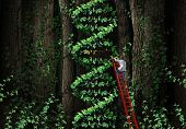 picture of gene  - Gene therapy DNA helix concept with a medical genetics specialist doctor on a ladder climbing a plant that represents part of the human chromosomes anatomy as a biotechnology metaphor for genetic testing and repair - JPG