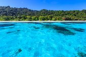 stock photo of crystal clear  - Beach of tropical crystal clear sea Tachai island Andaman Thailand