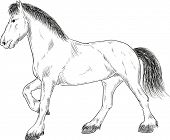 vector - horse standing - isolated on background