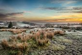 Frosty Sunrise At Bellever On Dartmoor