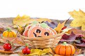 Halloween Decor Pumpkin Cookies