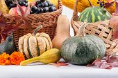 Seasonal fruit and pumpkins in basket