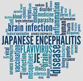 Japanese Encephalitis in word collage
