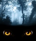 foto of werewolf hunter  - Dark series  - JPG