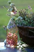 herbage acetum