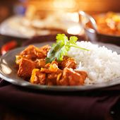 plate of indian chicken vindaloo curry with rice