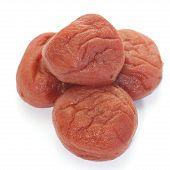 Japanese salt plum