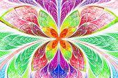 Multicolored Symmetrical Fractal Pattern As Flower Or Butterfly In Stained-glass Window Style. On Li