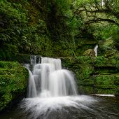 image of tramp  - Mclean Falls In Catlins Conservation Park, New Zealand