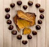 Chestnuts Heart