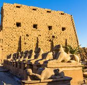 Sphinxes At The Entrance Of The Karnak Temple - Luxor, Egypt