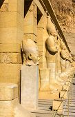 foto of hatshepsut  - Ancient statues in the Mortuary temple of Hatshepsut  - JPG
