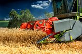 Combine Harvester At Wheat Field