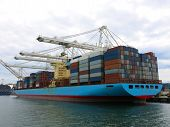 picture of loading dock  - Loaded container ship surrounded by cranes in the dock - JPG