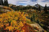 Alpine Autumn